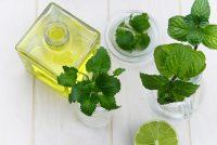 Химический анализ лекарственных растений