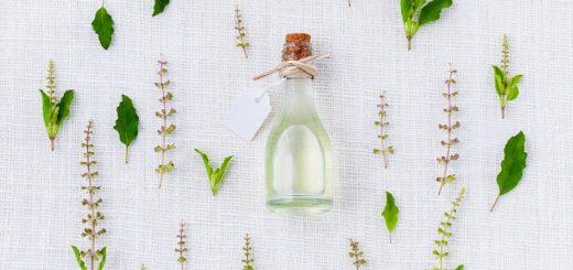 Методы анализа лекарственного растительного сырья