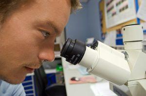 Химическая экспертиза - методы экспертов