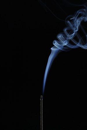 Экспертиза по запаху