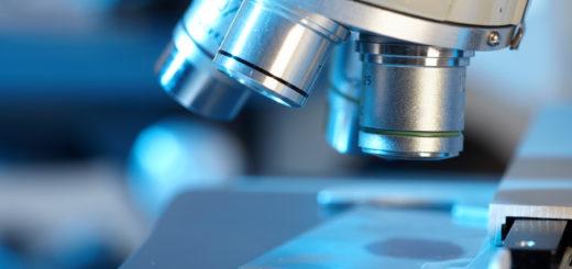 Лаборатория полимеров: цены
