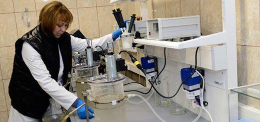 Испытательная лаборатория нефти и нефтепродуктов: данные о работе