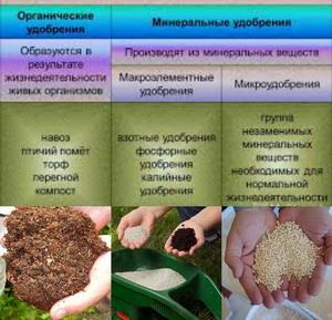Анализ минеральных удобрений