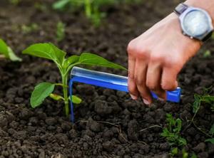 Где сделать химический анализ удобрений?