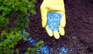 Как наладить воспроизводство удобрений?