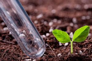 Анализ неорганических удобрений