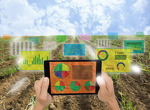 Анализ жидких органических удобрений