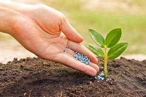 Как узнать, что входит в состав удобрений?